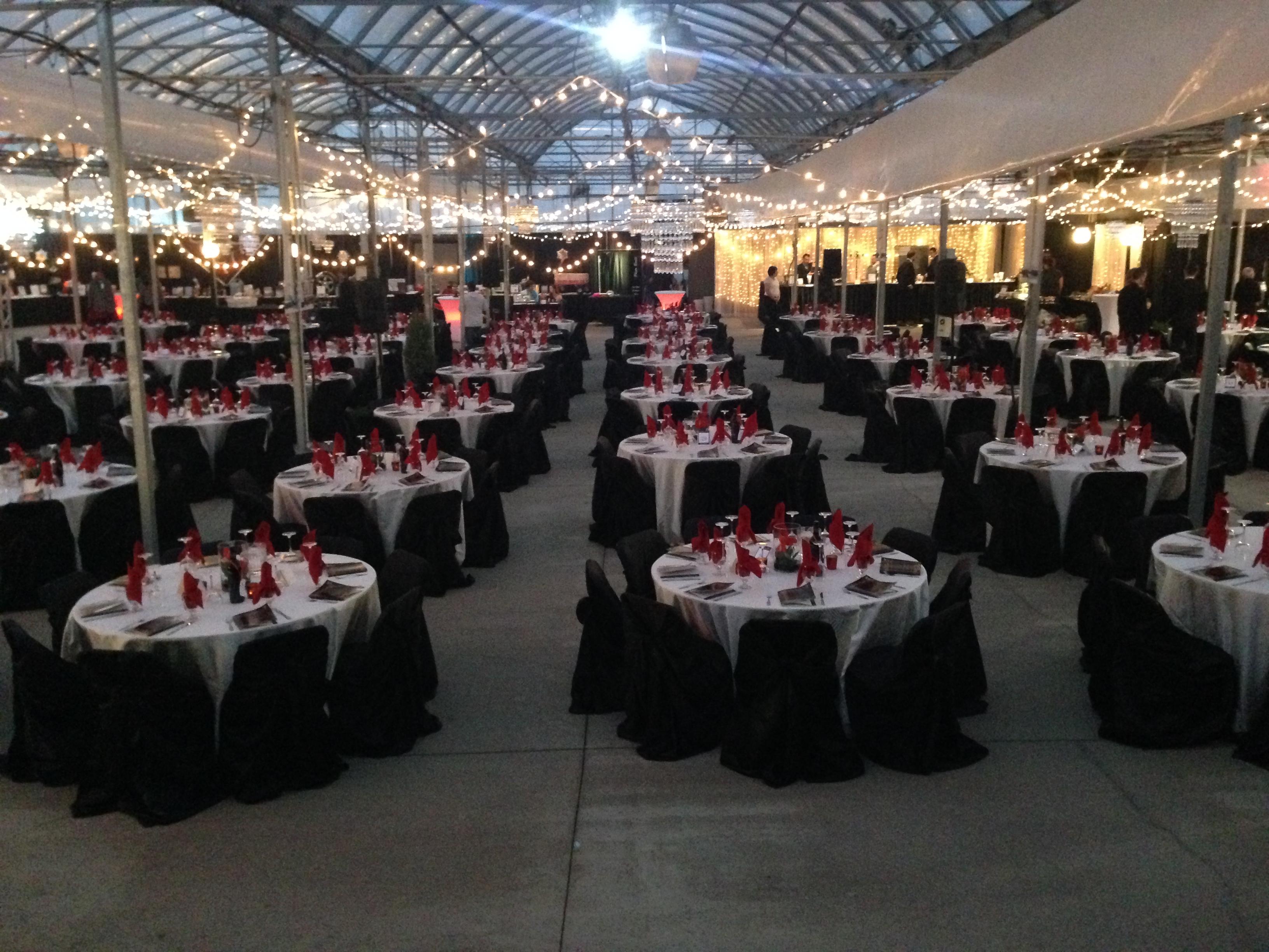 Saskatoon Special Events - Image 21