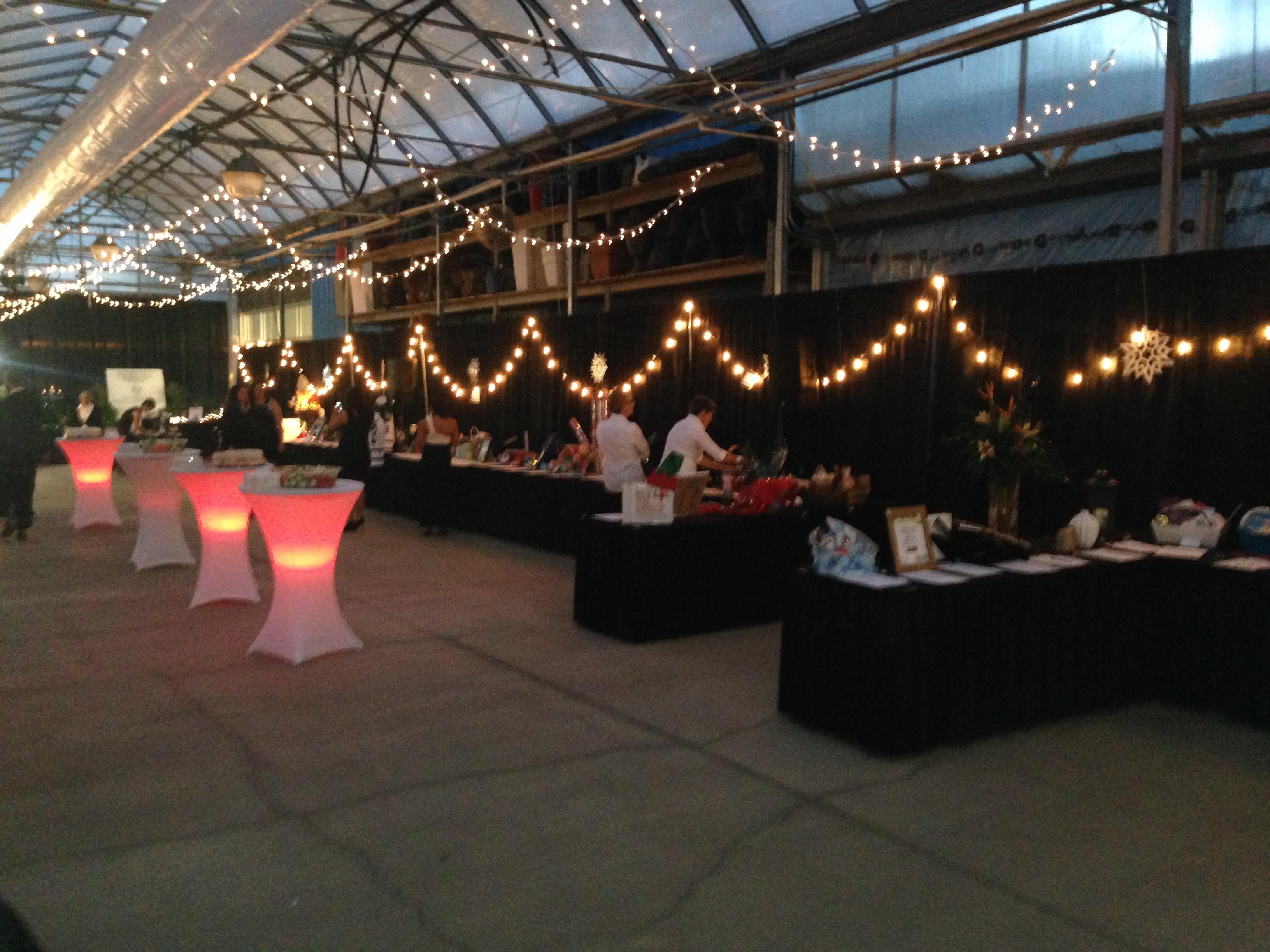 Saskatoon Special Events - Image 27